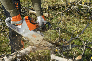TIPS FOR CHOOSING A CHAINSAW
